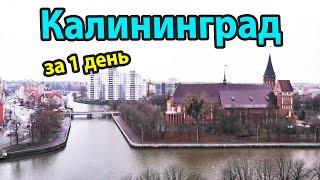 Калининград - куда пойти и что посмотреть за 1 день