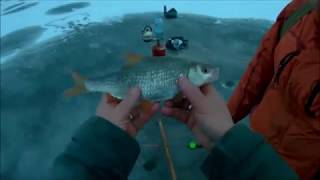 Зимняя рыбалка! 6 .02. 2018г