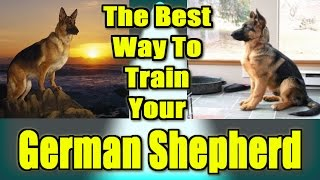 ♥ ♥ ♥ German Shepherd Training Techniques ► Start Now ◄ German Shepherd Training Tips :)))
