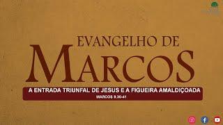 ESTUDO BÍBLICO AO VIVO -A ENTRADA TRIUNFAL DE JESUS E A FIGUEIRA AMALDIÇOADA.