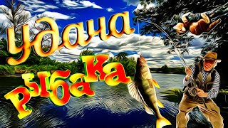 Порыбачим Смешные случаи на рыбалке Девушки на рыбалке Весёлая рыбалка 2020 Рыбалка с юмором