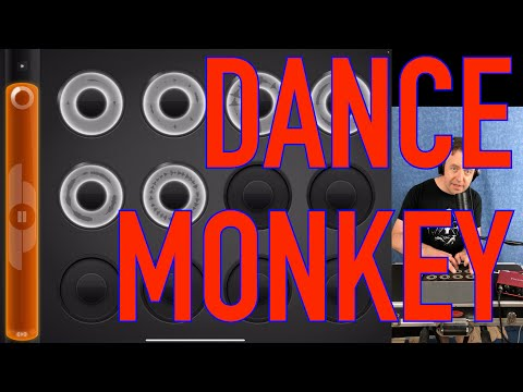 Tones And I - Dance Monkey -🕺🐵 - Loopy HD Vocal Loop Cover