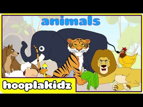 Learn About Sounds of Animals 2 | Preschool Activity by Hooplakidz