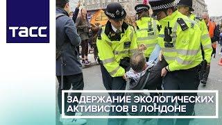 Задержание экологических активистов в Лондоне