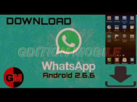 download whatsapp for android 2.3 6