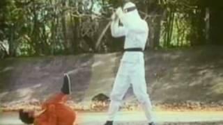 Godfrey Ho's Ninja Champion