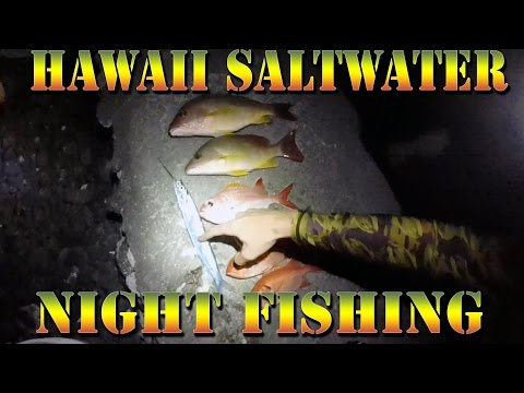 Night Saltwater Fishing In Hawaii - Ballyhoo Fish School - Menpachi, Snapper, Puffer -B.O.D.S. 25