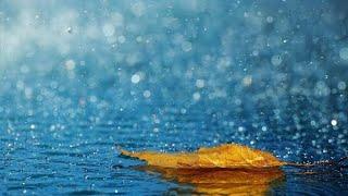 Bollywood rainy instrumental song collection ♥️♥️♥️♥️♥️ | Himanshu Katara's choice | 💓💓💓💓💓