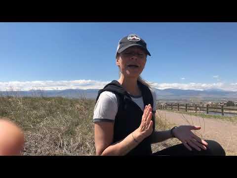 Invitation to Mindfulness / Meditation class & workshop at TDM-Boulder
