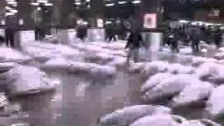 Oh Tokyo 2 - Tsukiji part 1