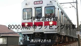 伊豆急行線 8000系赤帯ラッピング列車他 2020年2月