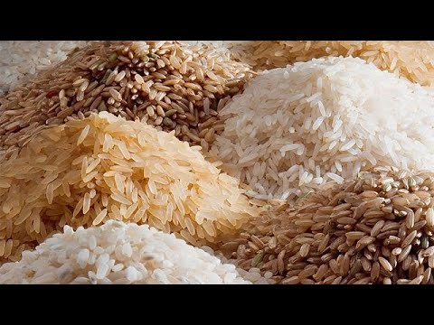 Ivory Coast aims to become food self-sufficient by 2020 by increasing rice production