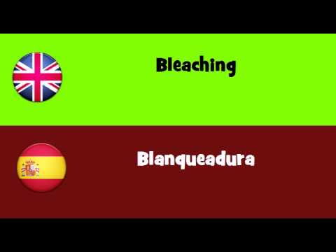 FROM ENGLISH TO SPANISH = Bleaching