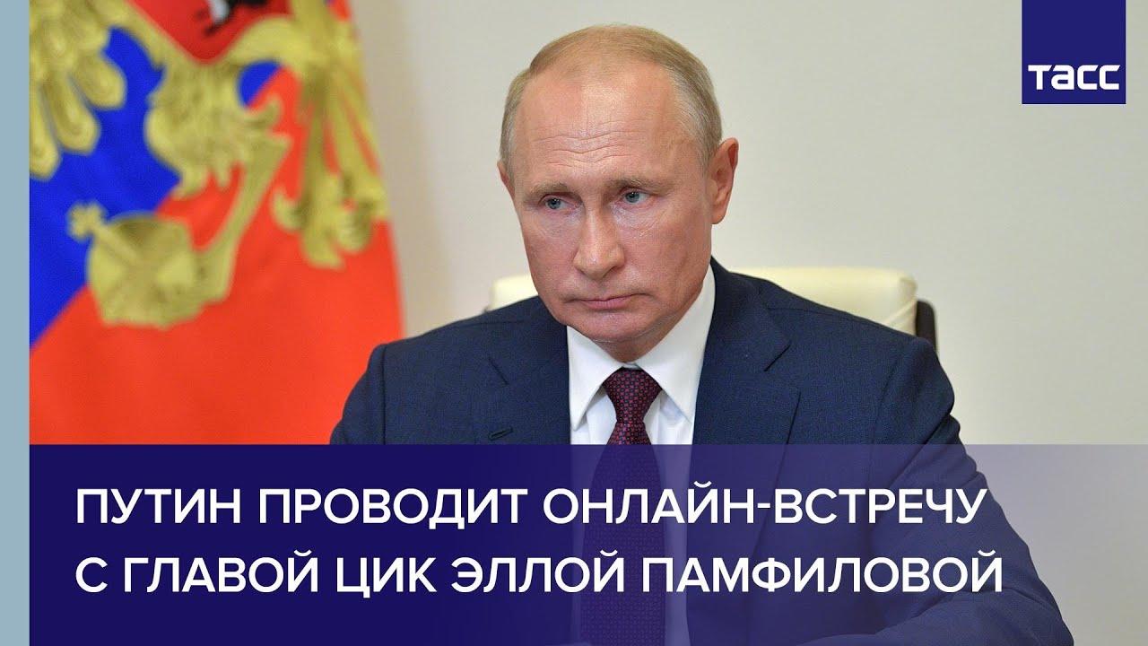 Путин проводит онлайн-встречу с главой ЦИК Эллой Памфиловой