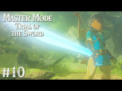 THE TRUE MASTER SWORD: Trial of the Sword MASTER MODE EDITION #10
