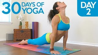 Yoga Essentials for Stress Relief, Day 2 of 30, Beginners Yoga Class