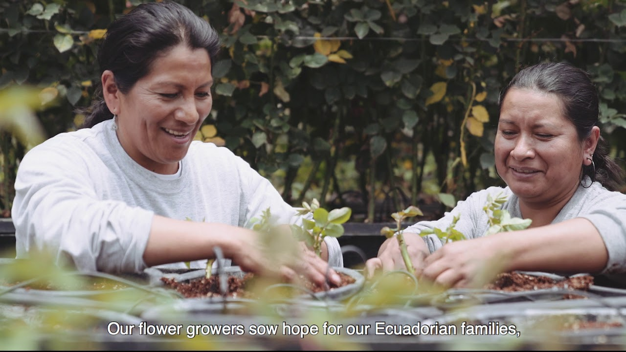 FLOR ECUADOR: We Connect Emotions