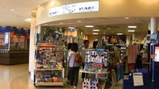 Narita Airport Terminal1 Narita Tokyo  Departure, Arrival, Shopping Mall, Dinning