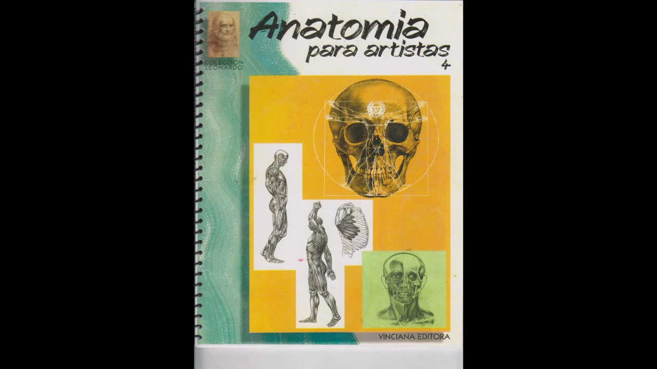 Excepcional 3d Anatomía Para Artistas Molde - Anatomía de Las ...