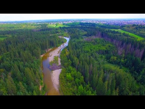Drone Flight In Fish Creek Park