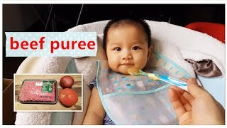 How to Make Beef Puree for Baby