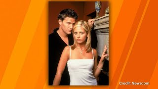 "Does David Boreanaz Want to Be Part of the ""Buffy"" Reboot?"