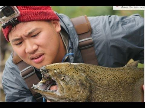 Salmon Fishing For Beginners: Oswego, NY - Fish World 10