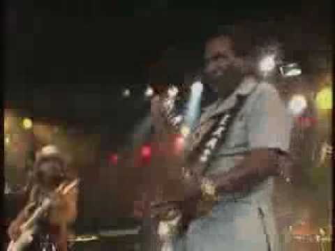 Stevie Ray Vaughan - Look At Little Sister mp3