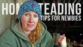 TIPS FOR NEW HOMESTEADERS with Little Mountain Ranch