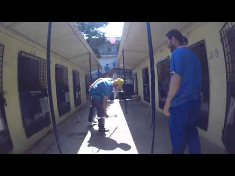 Worldwide Veterinary Services International Training Centre Tour