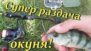ЛЕТО Жор окуня Рыбалка на мормышинг микроджиг с форелевым спиннингом Street Fishing Харьков
