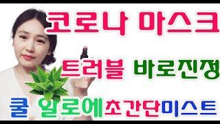 초간단 쿨링 알로에듬뿍 스킨 미스트 만들기 여름피부관리…