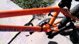 Bmx dk bike check