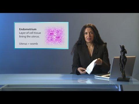 alyaa-gad---endometriosis
