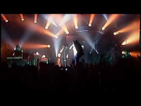 Alligator Sky - Owl City Live