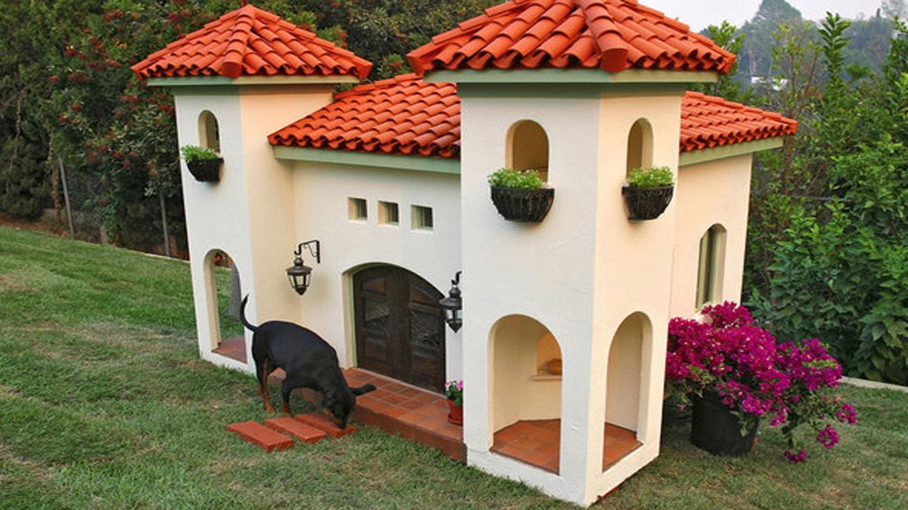7 casas lujosas para perros youtube for Casas pequenas y bonitas