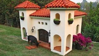 7 Casas Lujosas Para PERROS thumbnail
