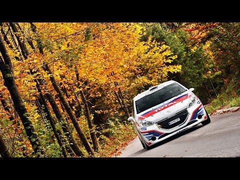 Rok Turk - Martina Lazar (Peugeot 208 R2) : 9. rally Idrija 2015 - best onboard moments