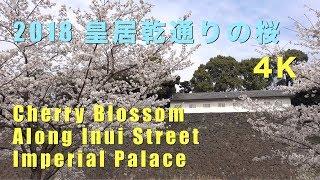 2018 皇居乾通りの桜(4K) Cherry Blossoms Along Inui Street In The Imperial Palace(UHD)