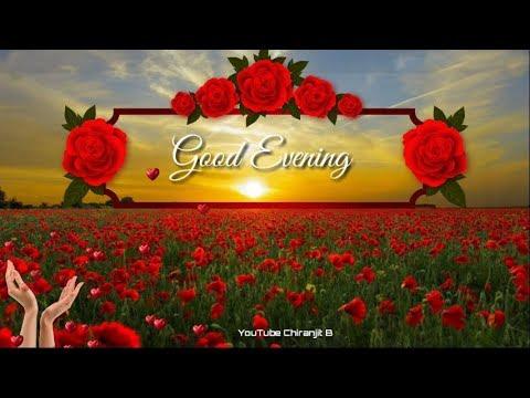Good Evening Beautiful Video