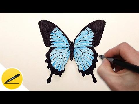 Как нарисовать полянку с цветами и бабочками