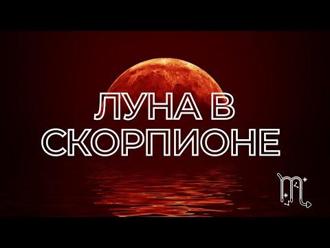 Луна в Скорпионе | Луна в знаках | Лунный знак | Гороскоп. Натальная карта. Астрология