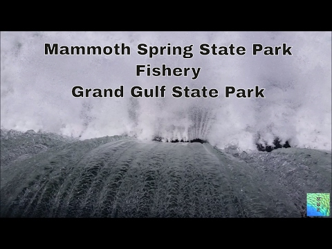 Mammoth Spring State Park, Fishery, and  Grand Gulf State Park, MO
