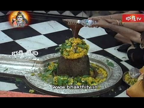Sri Nageshwar Jyotirlinga Darshan Darukavana Temple - Live_Part 2