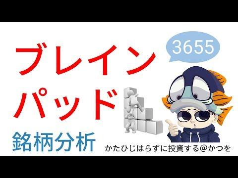 ブレインパッド(3655)の銘柄分析♪好決算&急騰!