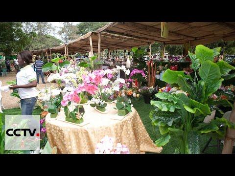 La capitale Accra accueille le salon annuel des jardins et des fleurs