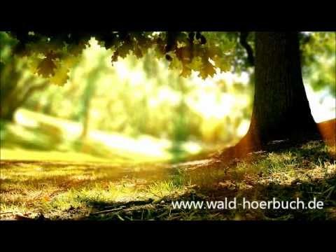 Wenn der Wald spricht 2 - Kapitel 05 - Inspiration