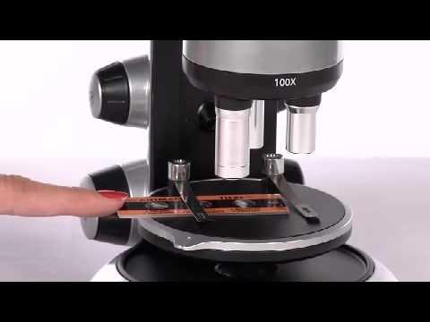 Toys R Us - Edu-Science - ProLab 1200X Microscope | Toys R Us Canada