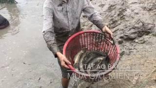 MGMienTay - TÁT AO BẮT CÁ Ở MIỀN TÂY - Catch Fish With Net