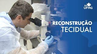 Biomaterial da UFMG atua na recuperação tecidual thumbnail